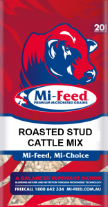 Roasted Stud Cattle