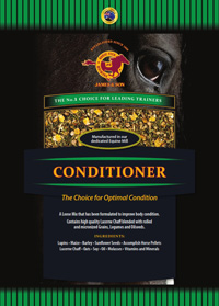 Conditioner_web